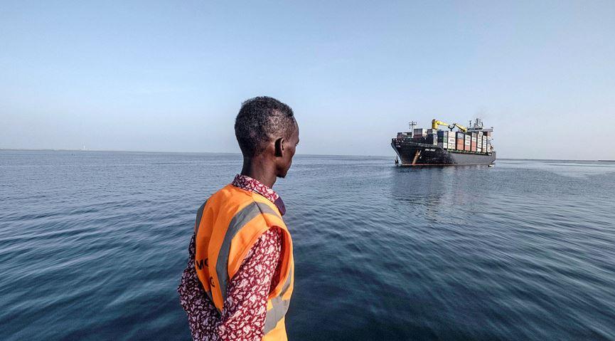 الدكتورة أماني الطويل تكتب: دلالات وأبعاد الاهتمام الأفريقي بالبحر الأحمر