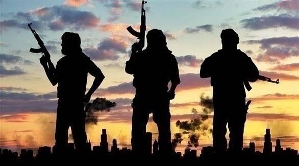 التنافس على قيادة الحركات الإرهابية في أفريقيا.. الأنماط  والتداعيات