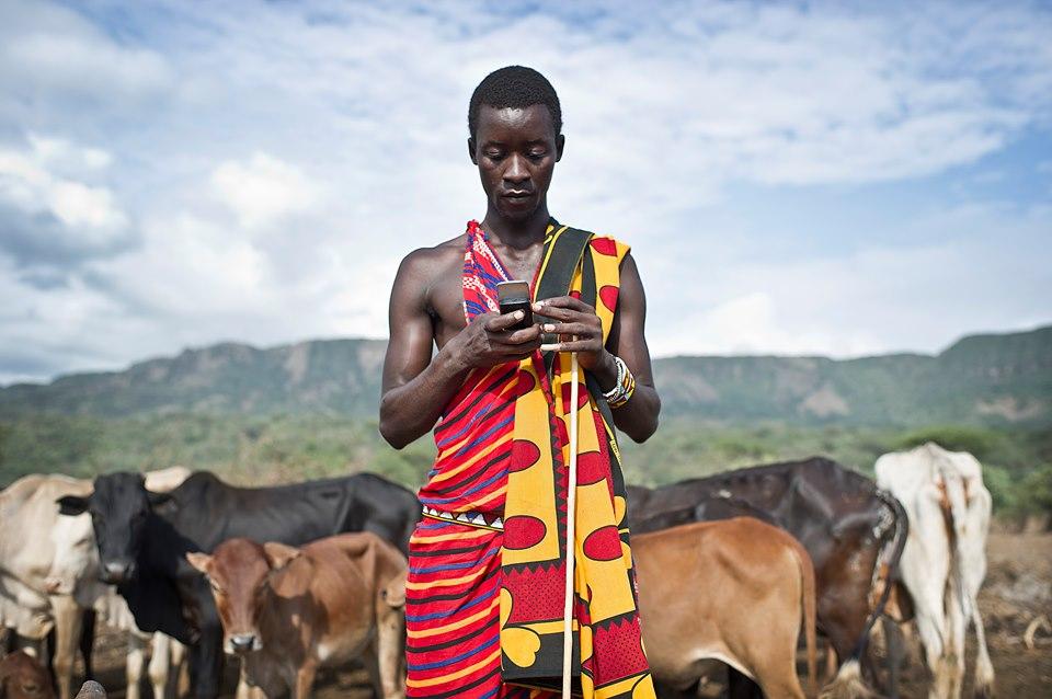 رقمنة أسواق الماشية.. تجربة كينية لتعزيز صناعة الثروة الحيوانية