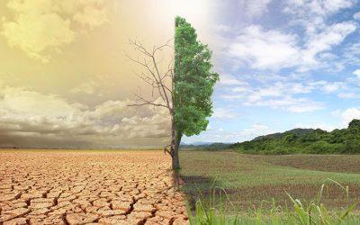 هل تنجو أفريقيا من التغيرات المناخية؟
