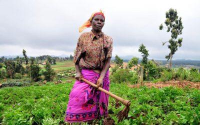 المرأة المعيلة في جنوب أفريقيا.. مهام خارقة في مواجهة واقع قاسي