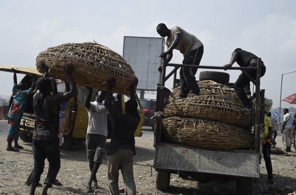 نيجيريا وحلول لتجاوز معضلة البطالة وسط كوفيد 19