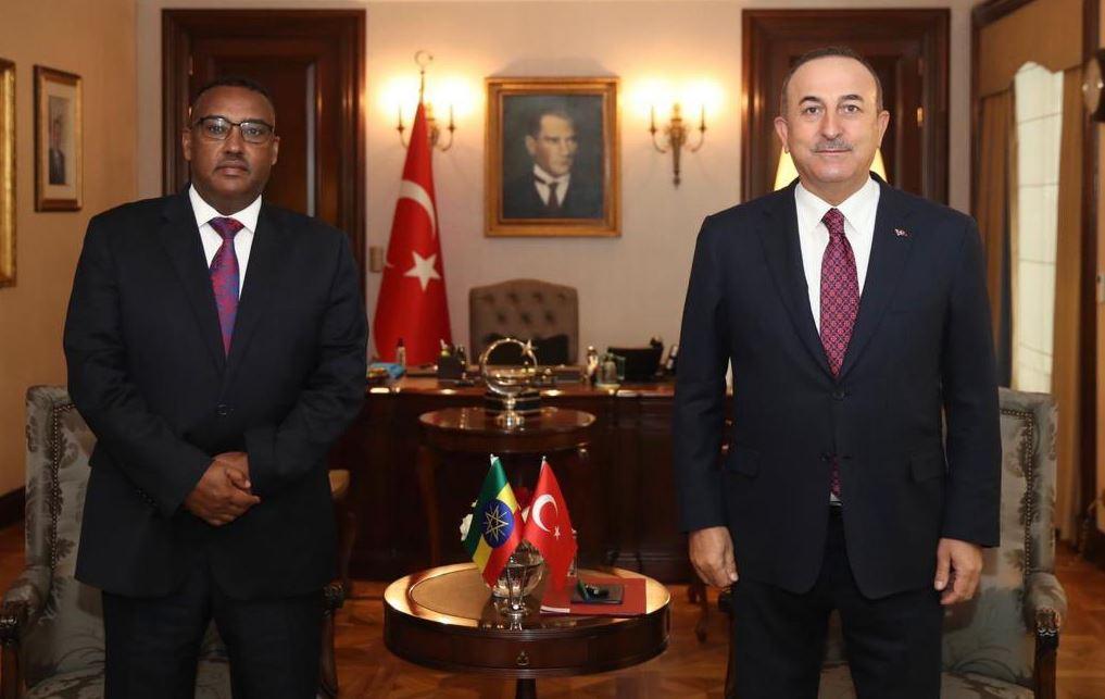التقارب التركي الإثيوبي الأخير.. لماذا؟