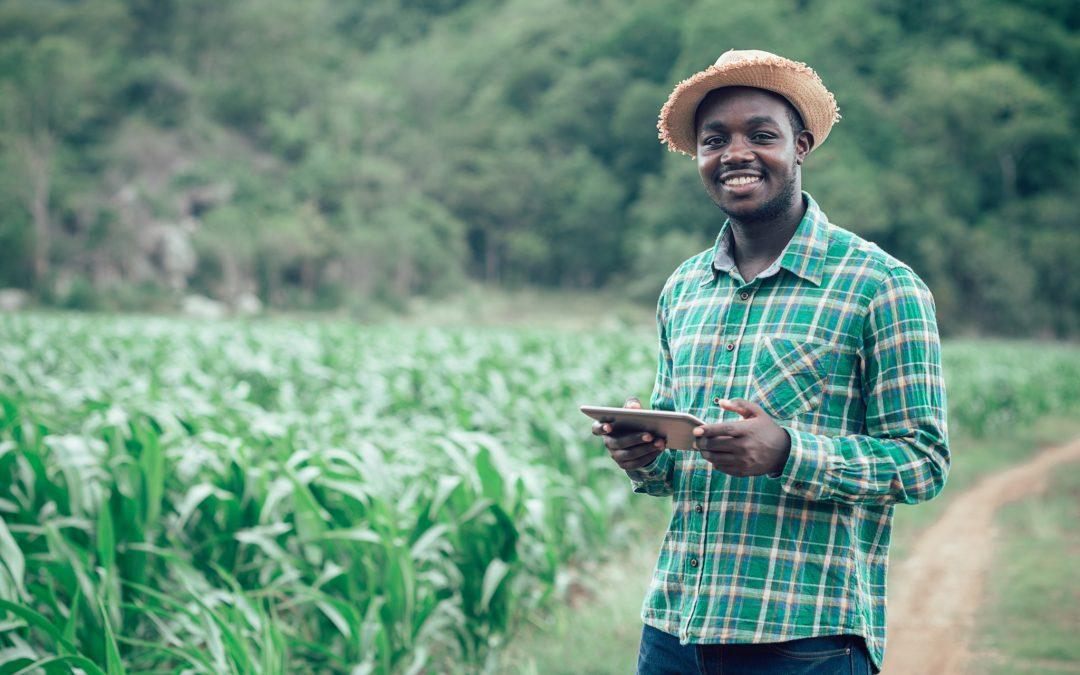 هل تستطيع الزراعة حل أزمة الوظائف المتفاقمة في أفريقيا؟